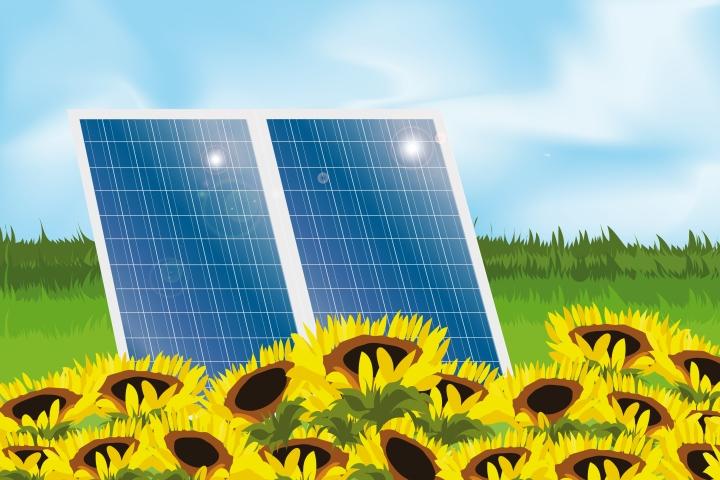 Solar News Blog
