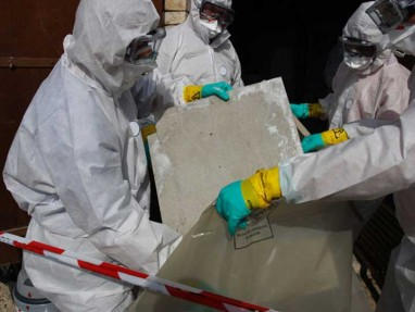 Find local asbestos removers near you in South Australia.